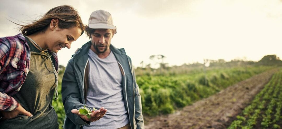 Creating connections: Bob Evans Farms leverages Microsoft services to improve employee experience